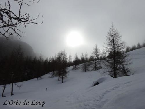 clt-l-oree-du-loup-gap-23