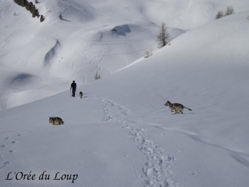 clt-l-oree-du-loup-gap-26